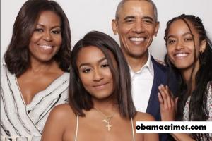 Barack Obama, Kehidupan Sebelum Kepresidenan